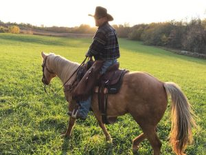 Cowboy on a palomino horse in a field